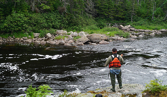 Atlantic Salmon Fishing River